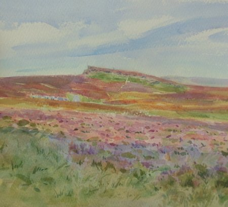Picture of the Week: <p> No apologies for another painting of the heather on the moors, it has been a good year for for it, and hopefully the bees as well</p>